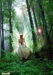 blog fairy